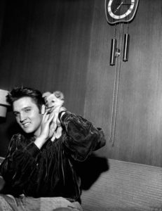 1956-october-18-elvis-sweet-pea-4